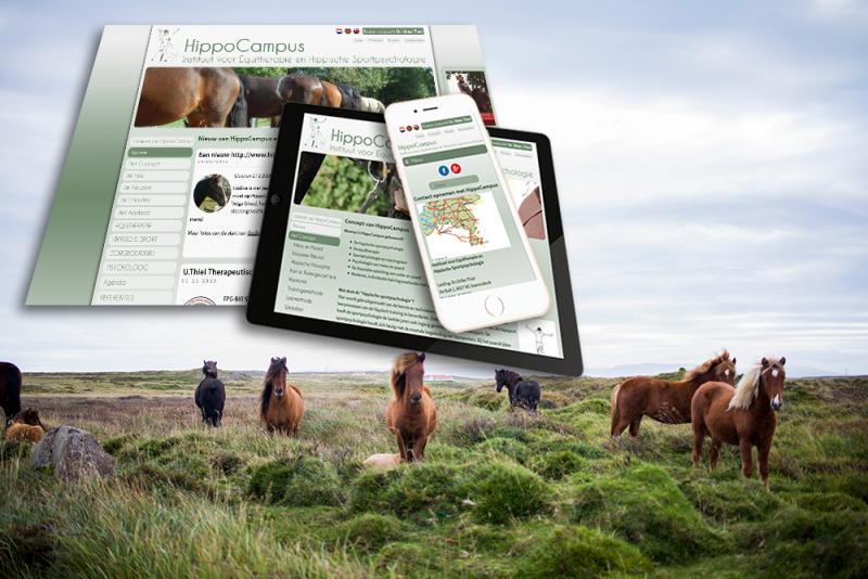 Nieuwe website voor HippoCampus - Brosis.nl