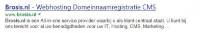 Voorbeeld title-tag in Bing