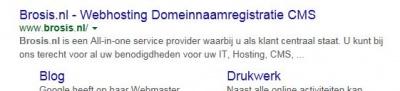 Voorbeeld title-tag in google
